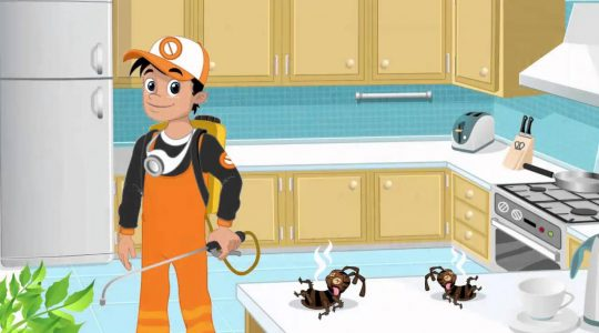 Why do you need to hire a professional pest control company?