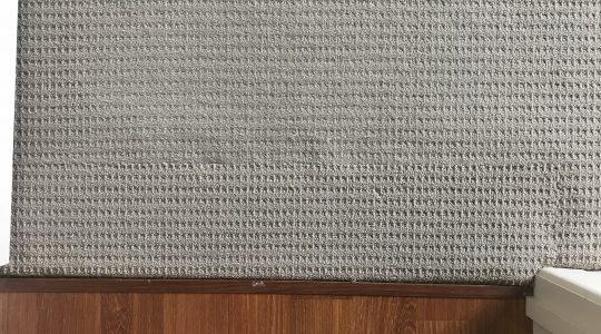 Carpet Damage – Repair or replace ?